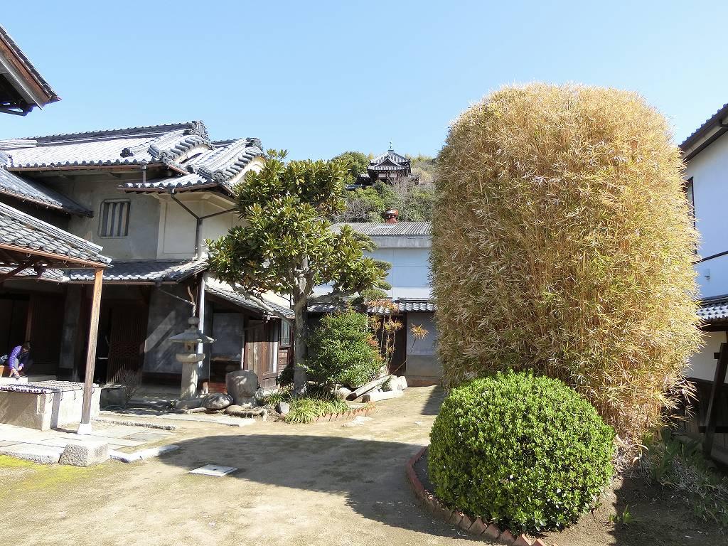 松坂邸の庭から寺を望む_180317