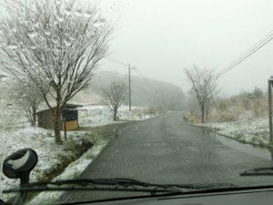 予想外の雪_2_180407