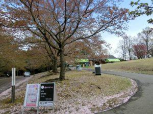 桜まつり_1_180408