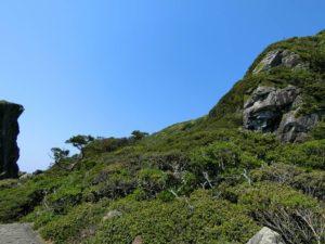 山側の景色_2_180504