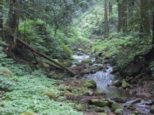 壇鏡の滝から流れる川_180713