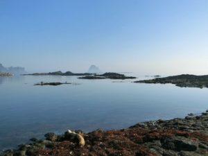 朝の海岸_180714
