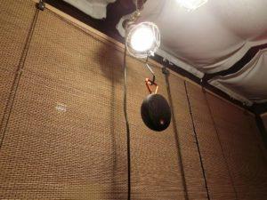 LED電球とClip2_181208