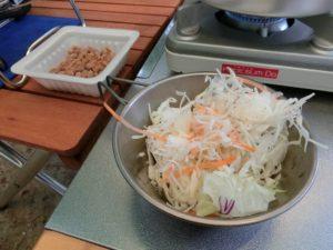 野菜サラダと納豆_190804
